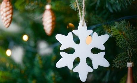 Provoz VŠE během vánočních svátků